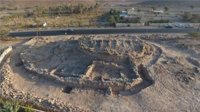 Photo of Carvings discovered at archaeological site as Ministry of Heritage and Culture completes excavation work