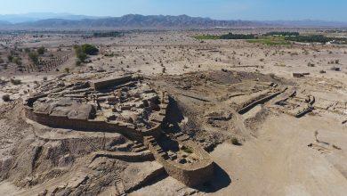 Photo of به قطع أثرية مهمة: تعرّف على تفاصيل أحد أهم المواقع التاريخية في السلطنة