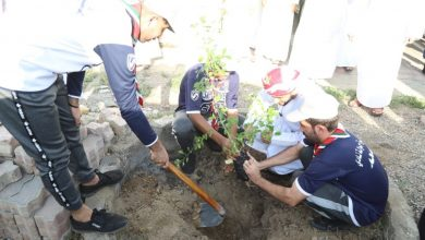 """Photo of بمناسبة #يوم_الشجرة: فريق مبادرون يطلق حملة """"البساط الأخضر مسؤوليتنا جميعًا"""""""