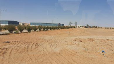Photo of منها 3 مصانع: مشاريع جديدة وحوافز للمستثمرين في المنطقة الحرة بالمزيونة