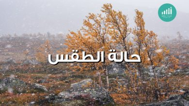 Photo of طقس اليوم: فرص لأمطار على بعض المحافظات
