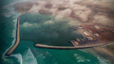 Photo of 22 قرية بجعلان بني بوعلي تُصدِّر أسماكًا ذات جودة عالية