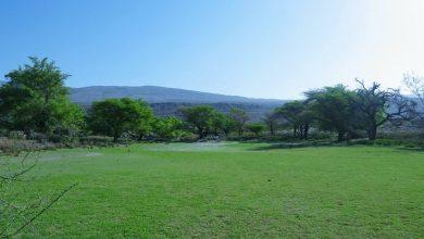 Photo of وجهة للاسترخاء والتخييم: قرية عمانية تكتسي بالأخضر فترة طويلة