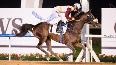 Photo of بالفيديو : حصان عُماني يُتوج بالمركز الأول في سباق بدبي